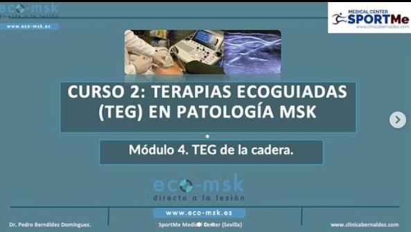 Terapia Ecoguiada en Cadera. Curso Eco-msk
